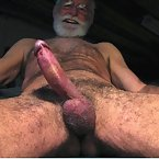 View Willie lovely daddy bears videos