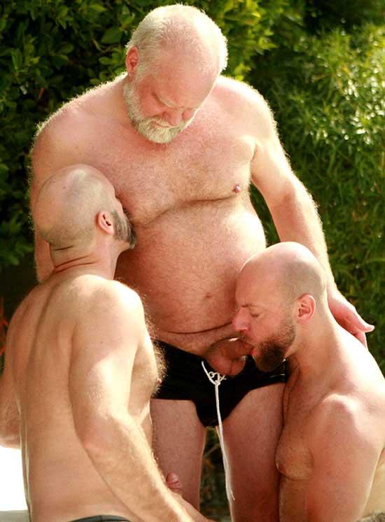 Gay silverdaddies tube