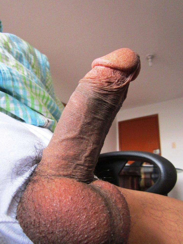 latin dick